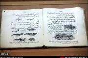 گزارش تصویری کتابهای درسی قدیمی