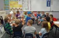معلم حرفه ای: گروه، بازی، مسابقه