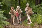 ارتباط بین یادگیری کودکان در تابستان با رشد آنها