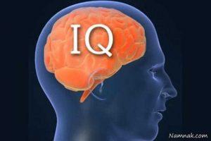 فرق هوش و ضریب هوشی (بهره هوشی) چیست؟