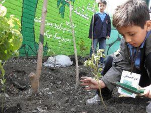 پیوند مدرسه با طبیعت